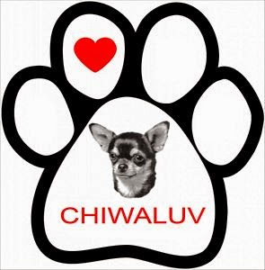 Chiwaluv Amigurumi Critters