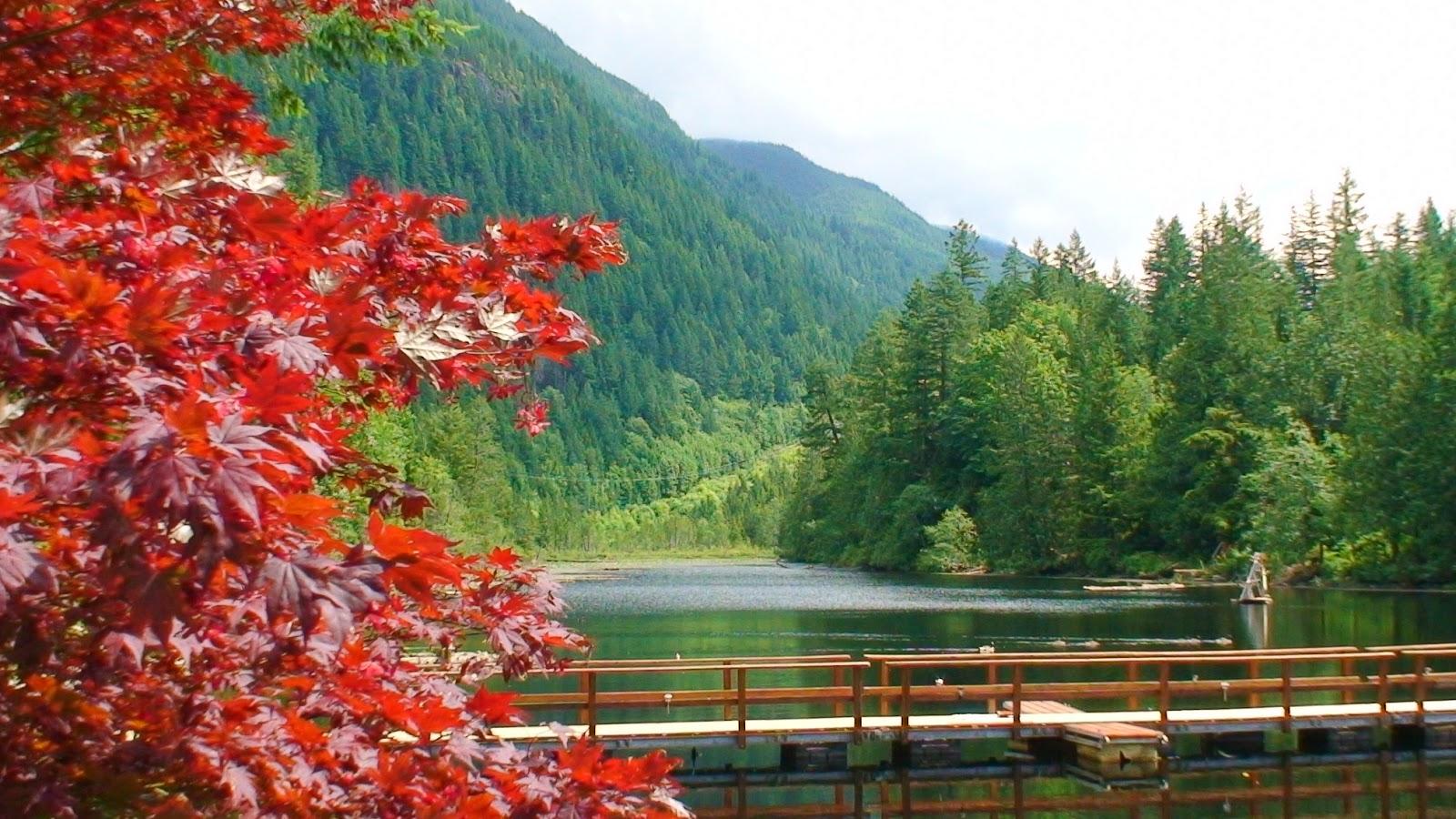 「溫哥華島」的圖片搜尋結果