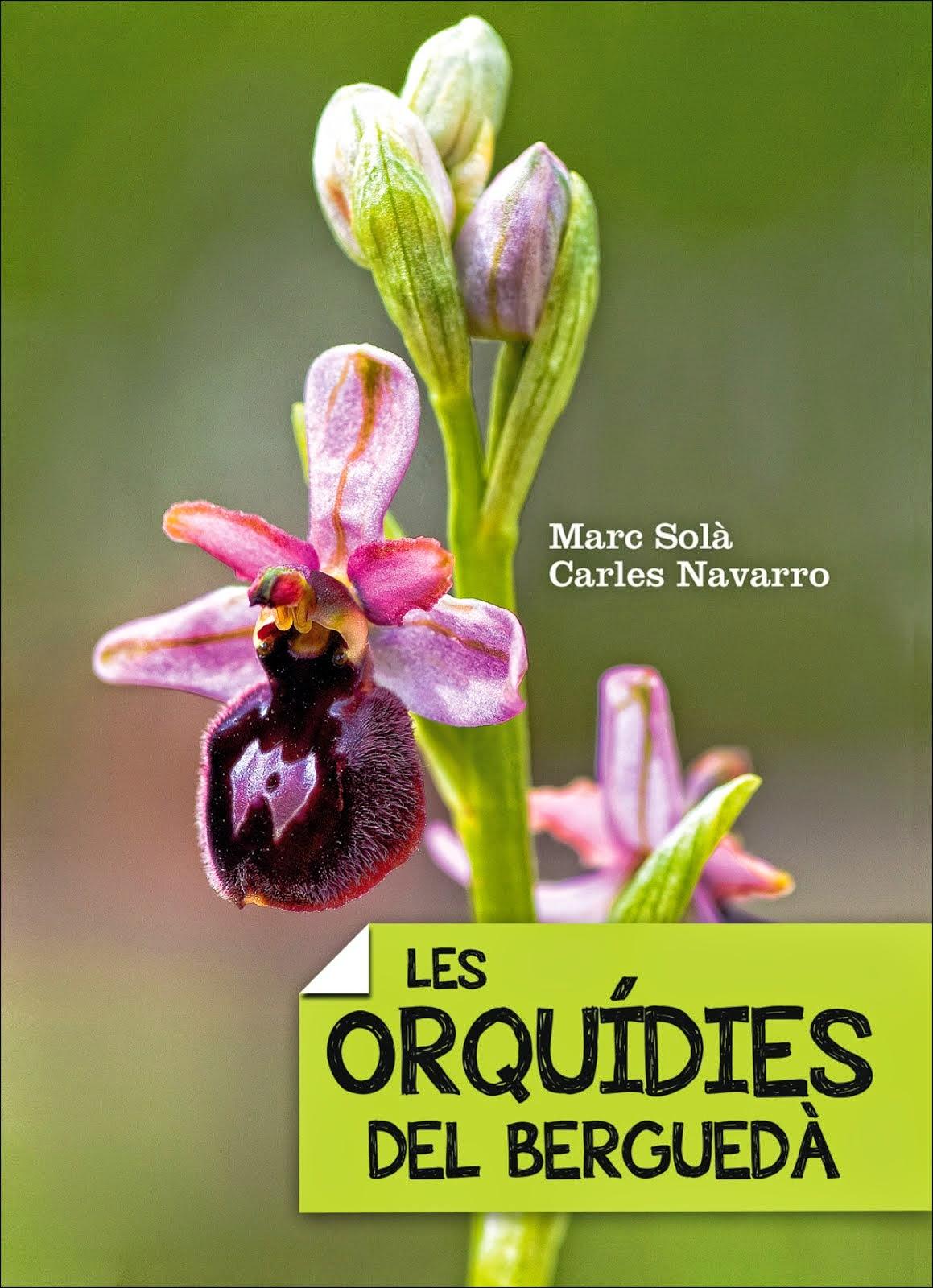 Les orquídies del Berguedà