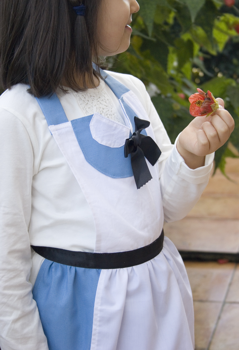 Decorar en familia: Delantal disfraz de Alicia en el Pais de las Maravillas13