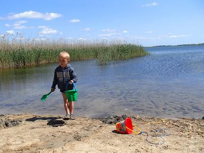 Mazury, Cicha Zatoka, Mikołajki, Popielno, żeglowanie, łabędź, kaczka, plaża