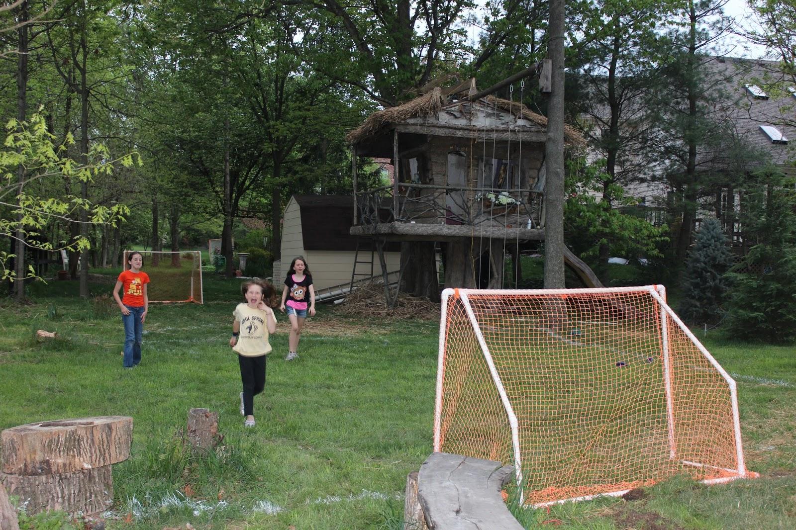 soccer field in backyard barkeater follies back yard mini soccer