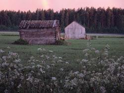 Maalaismaisemaa