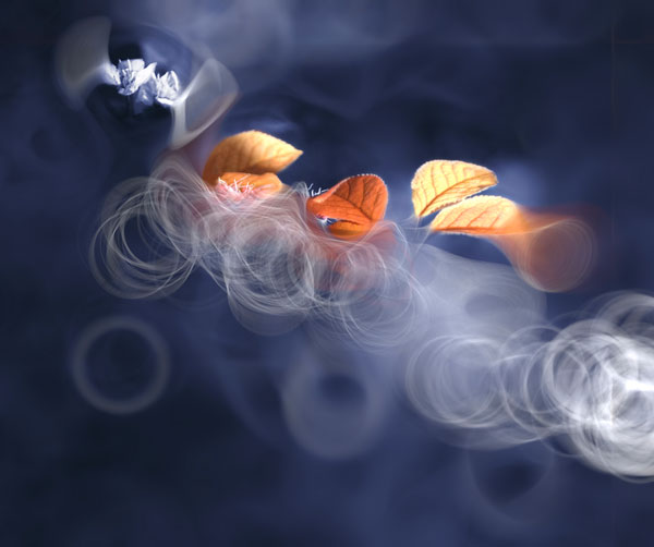 Photos by Josep Sumalla i Jordana