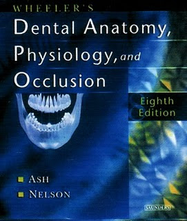 Dental Anatomy,Physiology dan Occlusion