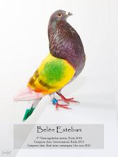 BELEN ESTEBAN.