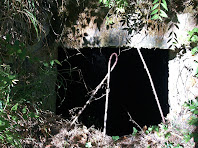 Detall de l'obertura de llevant del Pou de Glaç de Calders
