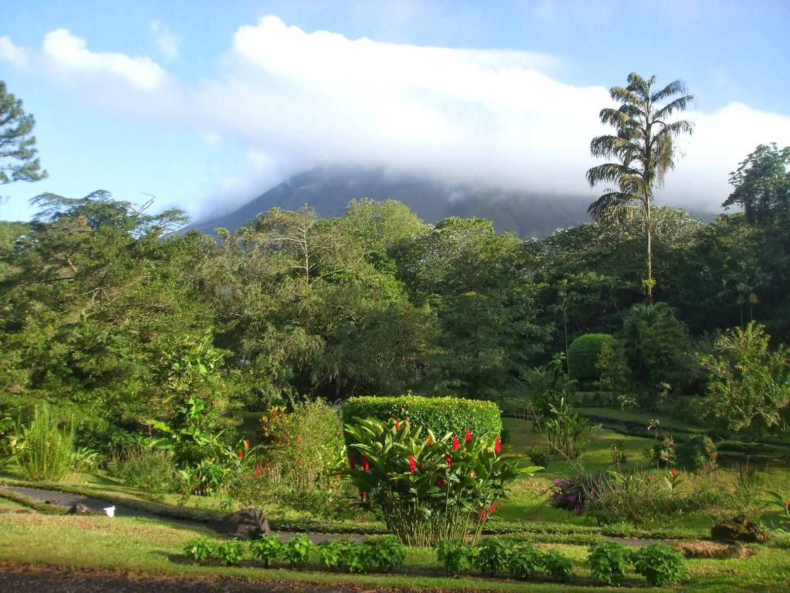 Rosemary39s Sampler Costa Rica Agua Dulce