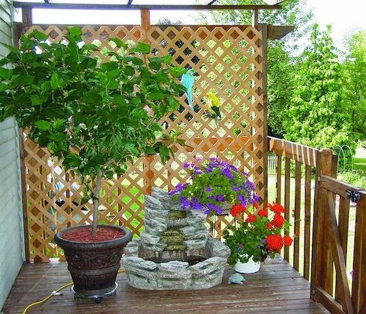 13 Attractive Ways To Create Privacy In Your Yard