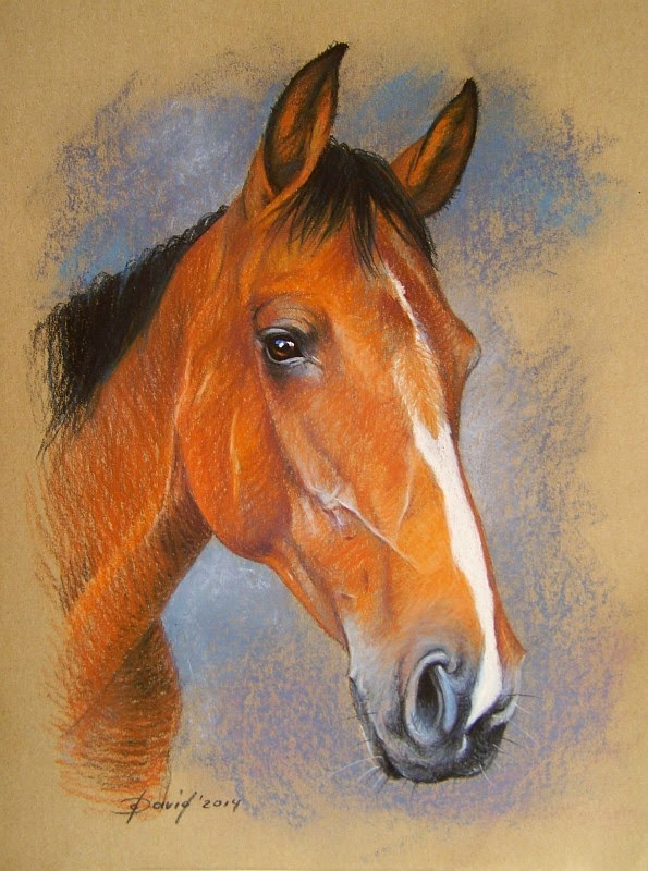 Pferdekopf, Pastellzeichnung auf Papier