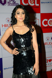 Actress Shriya Saran Latest Picture in Black Long Dress at CCL Charity Dinner 33