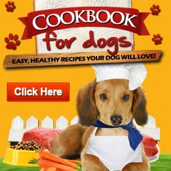 Make Your Dog Food At Home