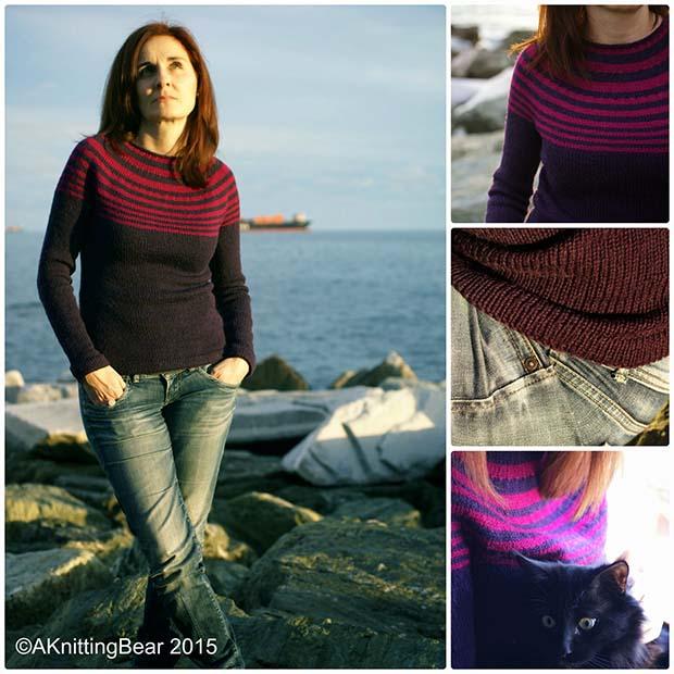 Maglione modello gratuito di Annalisa Dione