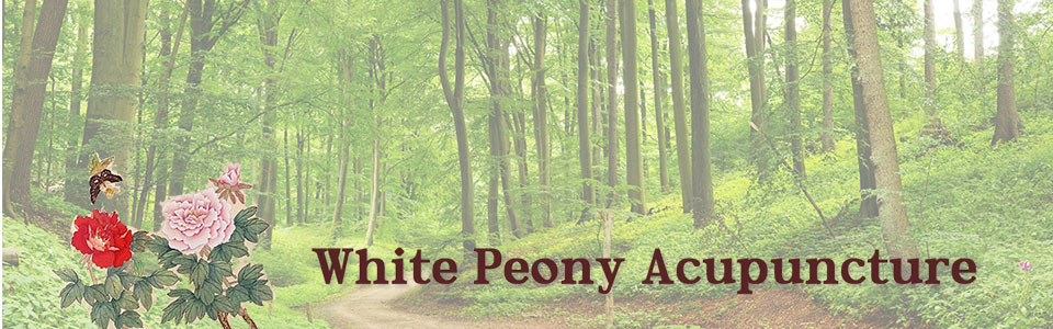 White Peony Acupuncture Los Altos