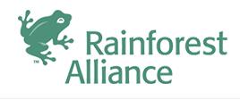 Lowongan Kerja Rainforest Alliance (NGO Internasional)