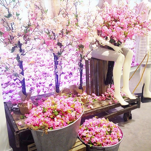 Awaiting spring with Cherry Blossoms at Kleinfeld Canada in the Hudson Bay