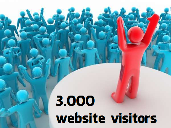 Buy 3000 Website Visitors