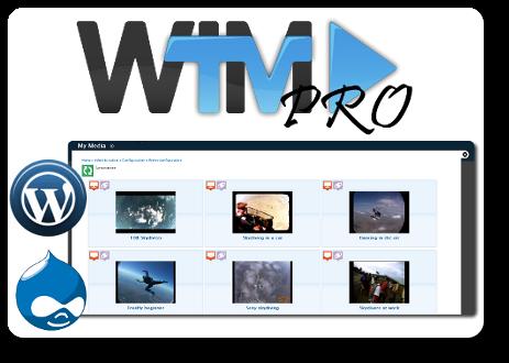 guadagnare con una web tv