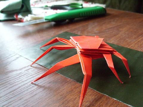 Spider crab (by Jo Nakashima)