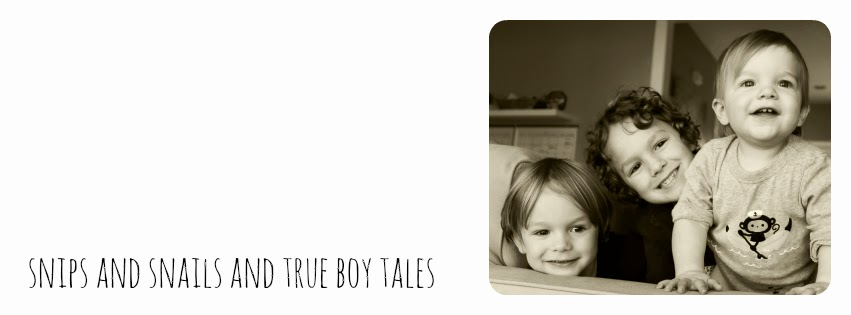 true boy tales