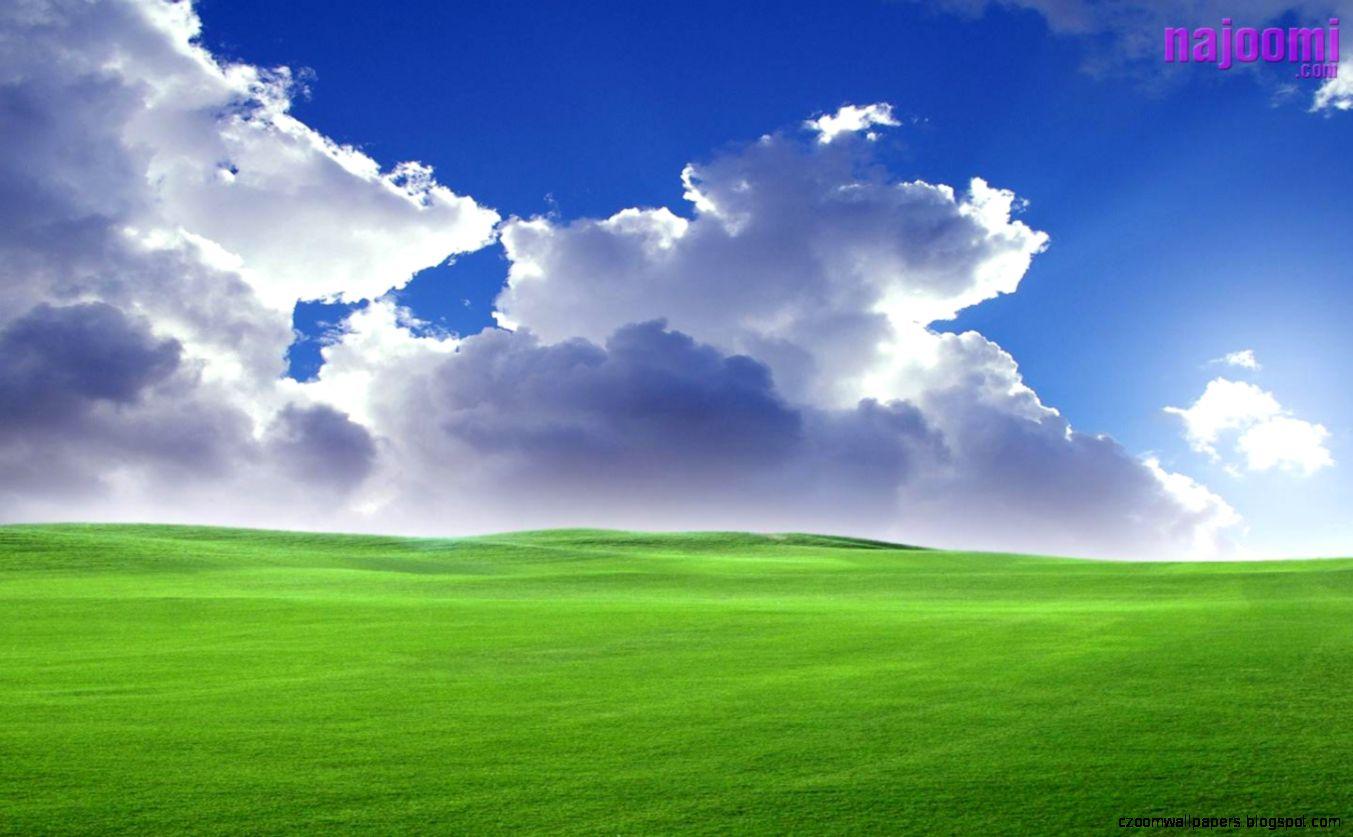 bliss windows xp najoomi com background 673438