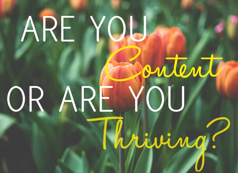 Are You Content or Are You Thriving?