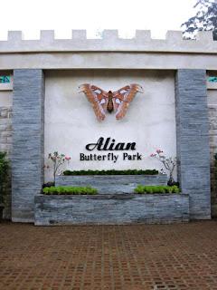Alian Butterfly Park, Wisata Edukasi dan Konservasi Kupu-Kupu