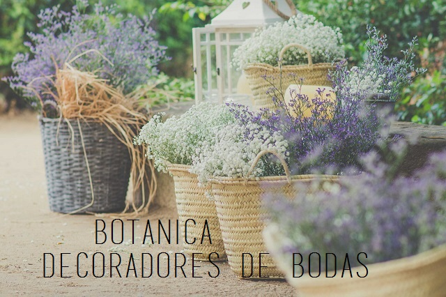 Decoraci n de bodas vintage r stico chic for Decoracion jardin vintage