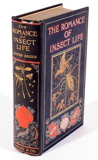 The Romance of Insect Life
