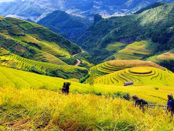 Cho thuê xe giường nằm đi Lào Cai, SaPa