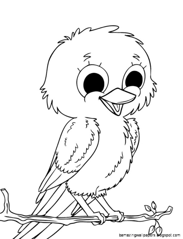 Cute bird sketch amazing wallpapers for Cute parrot coloring pages