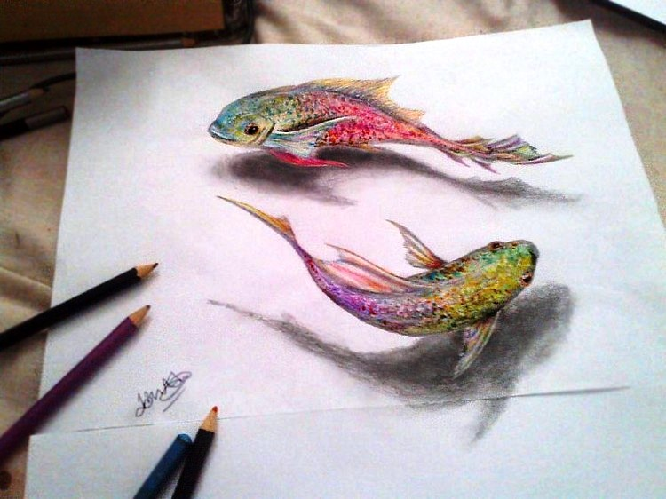 3d Animal Drawing Between The Lines Art Craft Gift Ideas