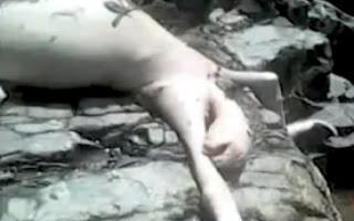 chicos mataron a monstruo en panamá