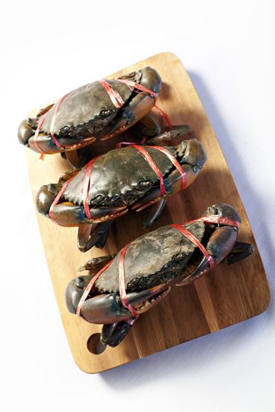 Cách chọn mua hải sản tôm, mực, sò, cua, ghẹ tươi ngon