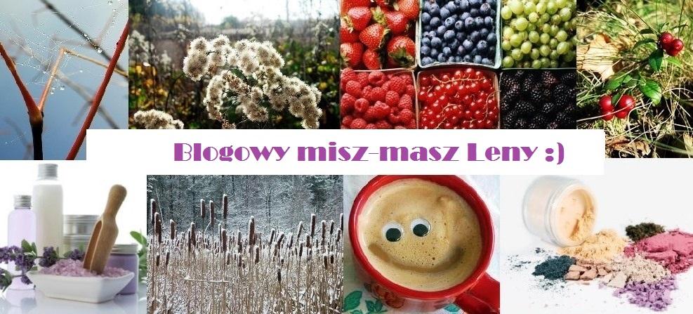 Blogowy misz-masz Leny :)