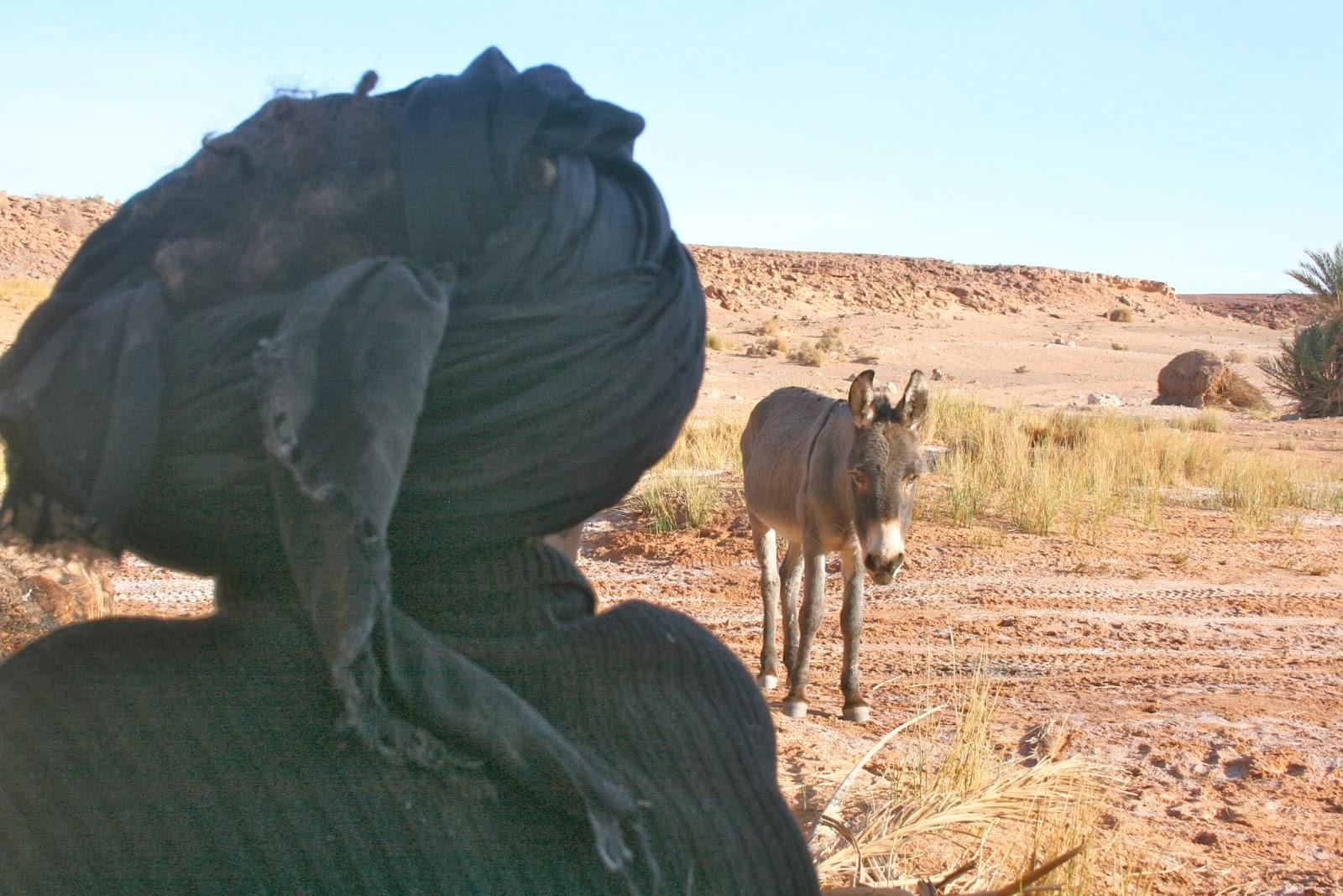 viajes a marruecos, viajes al desierto, arfoud, erg chebi, nómadas, felicidad