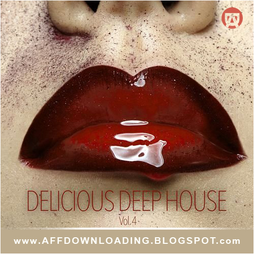 VA  – Delicious Deep House Vol 4  – 2015