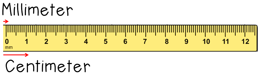 Online Foot Ruler Actual Size Image  pective  The Actual