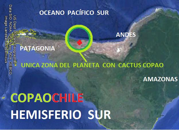 UBICACION DE COPAOCHILE