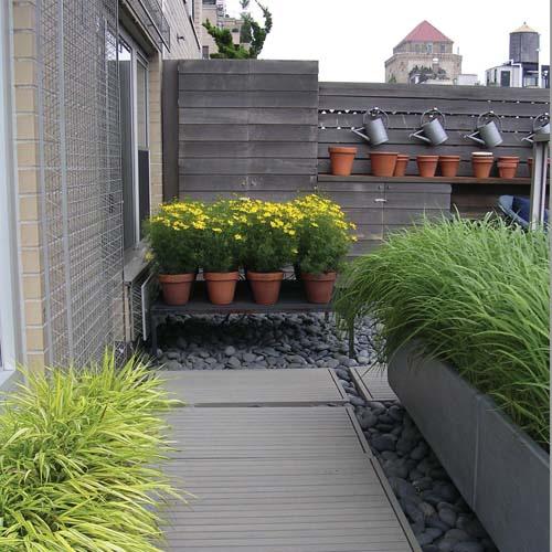 decorar um jardim:Modern Terrace Garden