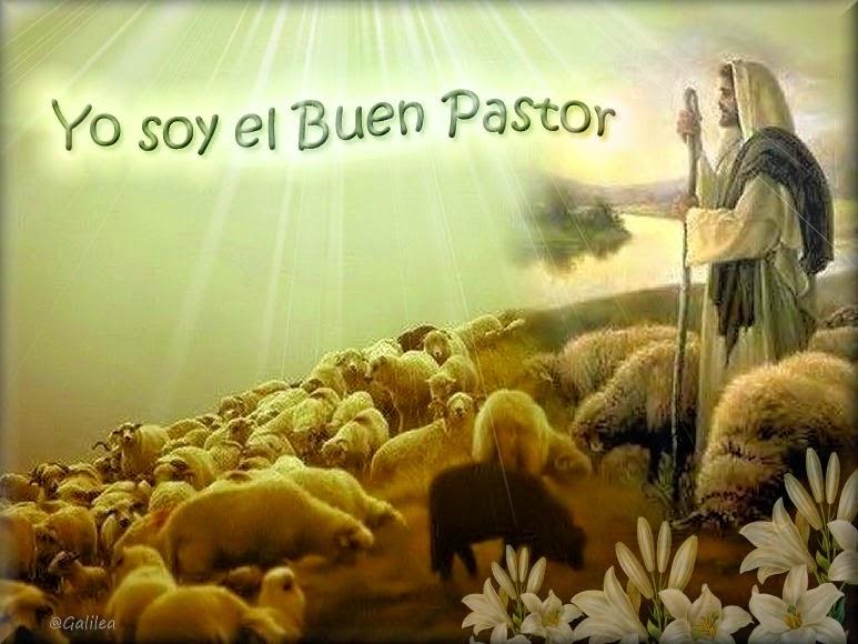 ® Colección de Gifs ®: IMÁGENES DE JESÚS EL BUEN PASTOR