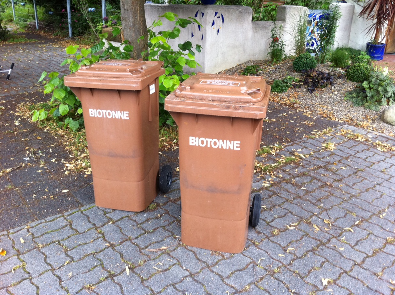 in the rubbish bin by apirana taylor Te aute and wanganui school trusts (report and evidence of robert lee, and apirana instructed the rev richard taylor.