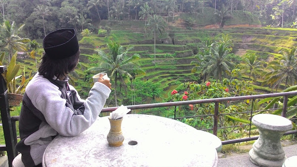 Tegalalang Rice terrace terasering