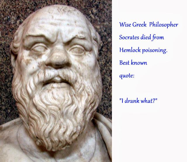 funny socrates quote