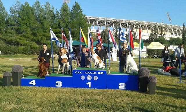 14η Έκθεση Ελληνικής Εκτροφής Π.Ι.Π.Ε.Ε. – CAC & Διεθνής Έκθεση Σκύλων CACIB 14 & 15 .11.15