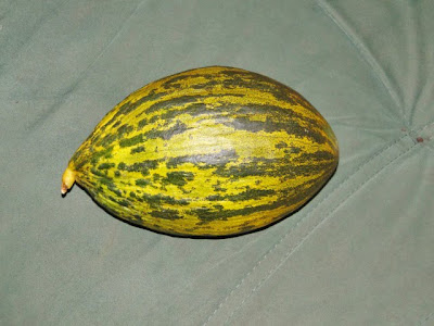 Spaanse meloen