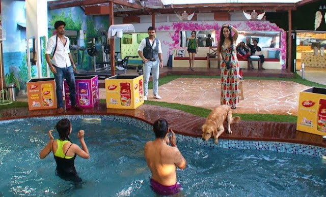Gauhar and Andy finding chavanprash bottles in pool to win captaincy
