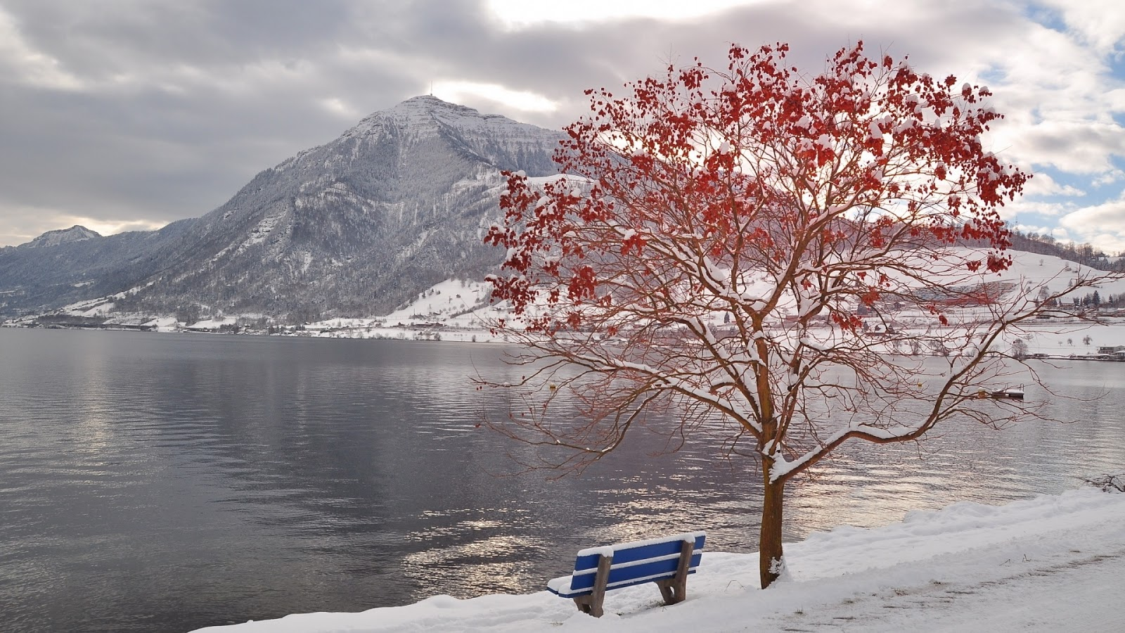 Bench by Beautiful Lake