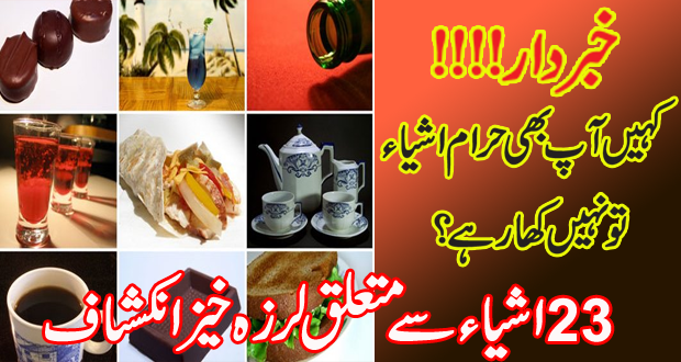 List of 23 Food Items declared HARAM by M/O Science & Technology