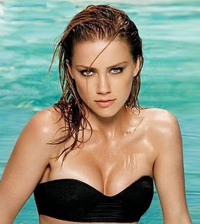 Amber Laura Hot Hollywood Celebrities Hot amp Sexy Photos Of Amber Laura Wallpapers Photos Images gallery pictures